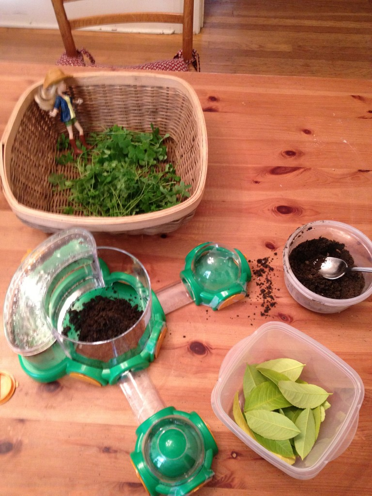 Ella's bug catching kit